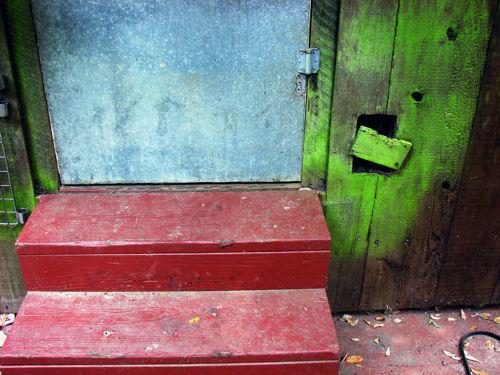 Back Door (byblegg)