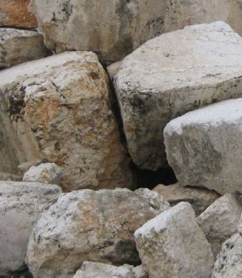 stones-from-the-temple-wall-goldberg-crop.jpg