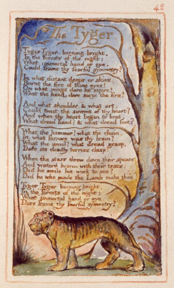 tyger (original plate by wm blake)