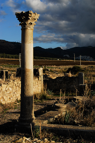 roman ruins at volubilis (by dhess)